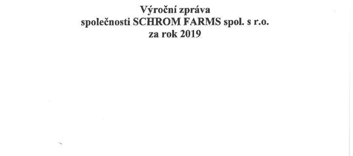thumbnail of VZ 2019